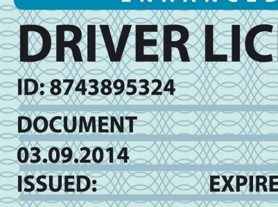 Simplified image of a driver license, license, drivers, document, security, international, identity, documentation, driver, identification, ticket, symbol, holiday, driver license, personal, control, illustration, vector, icon