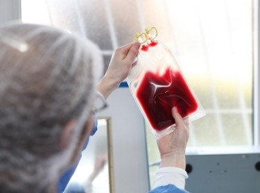 Doctor inspecting a blood bag