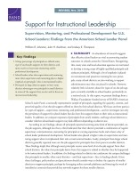 support for instructional leadership supervision mentoring and