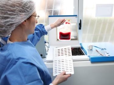 Medical staff member checking a blood bag