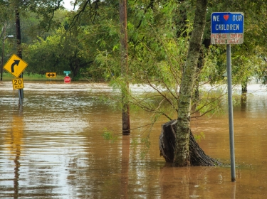 A picture of multiple street signs in a flood