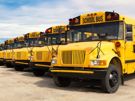 A row of yellow school buses lined up in a parking lot