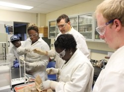 ethnically diverse scientists in lab