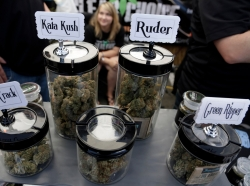 A vendor displays products at the High Times U.S. Cannabis Cup in Seattle, Washington September 8, 2013. The Cup features exhibitions as well as a marijuana growing competition.