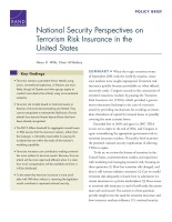 Cover: National Security Perspectives on Terrorism Risk Insurance in the United States