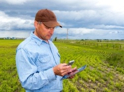 Farmer using a smartphone and tablet PC while standing in his field