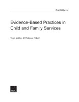 Cover: Evidence-Based Practices in Child and Family Services