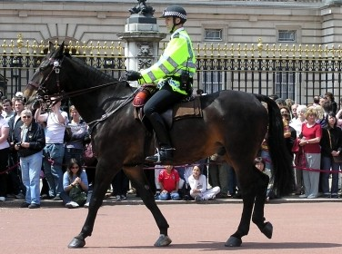 Mounted police outside Buckingham Palace
