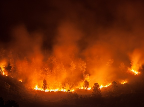 Forest fire, several hectares of pine trees burned during the dry season in June 2013 in Tele-Samosir Lake Toba (Danau Toba) North Sumatra (Sumatera Utara) Indonesia, photo by Ares/Adobe Stock