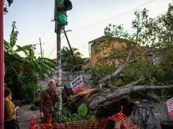 People talk outside of Flora Gallery and Coffee Shop near a downed tree in the street after Hurricane Zeta swept through New Orleans, Louisiana, October 29, 2020, photo by Kathleen Flynn/Reuters