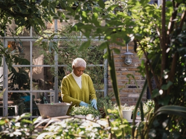 An elderly black woman doing gardening at an outdoor table, surrounded by green plants. Photo by SolStock / Getty Images