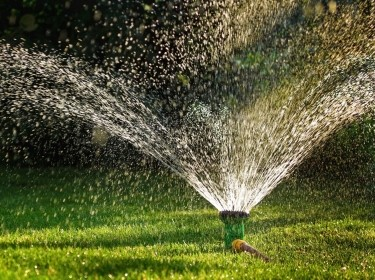 Lawn sprinkler, Gardening Equipment, Sprinkler, spraying water, green grass, Equipment, Hose, Irrigation Equipment, Watering, Horizontal, Freshness, Grass, Green, Lawn, Outdoors, Splashing, Spraying, Sprinkling, Water, Front or Back Yard