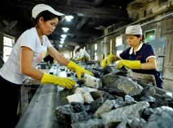 Women work at a tungsten mining factory in China