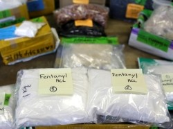 Plastic bags of Fentanyl are displayed on a table at the U.S. Customs and Border Protection area at the International Mail Facility at O'Hare International Airport in Chicago, Illinois, November 29, 2017