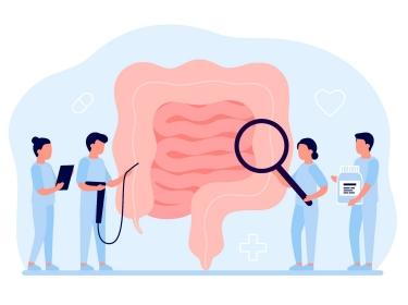 Doctors examining gastrointestinal tract, illustration by Iuliia/Adobe Stock