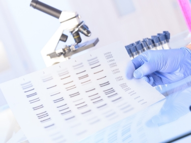 Biomedical researcher analizing DNA