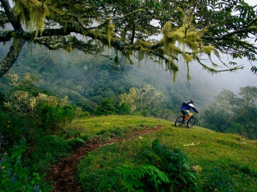A man rides a downhill mountain bike trail in Costa Rica, photo by GibsonPictures/AdobeStock