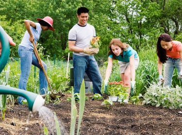 A group of people planting in a community garden