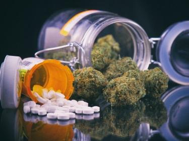 Cannabis buds and prescriptions pills